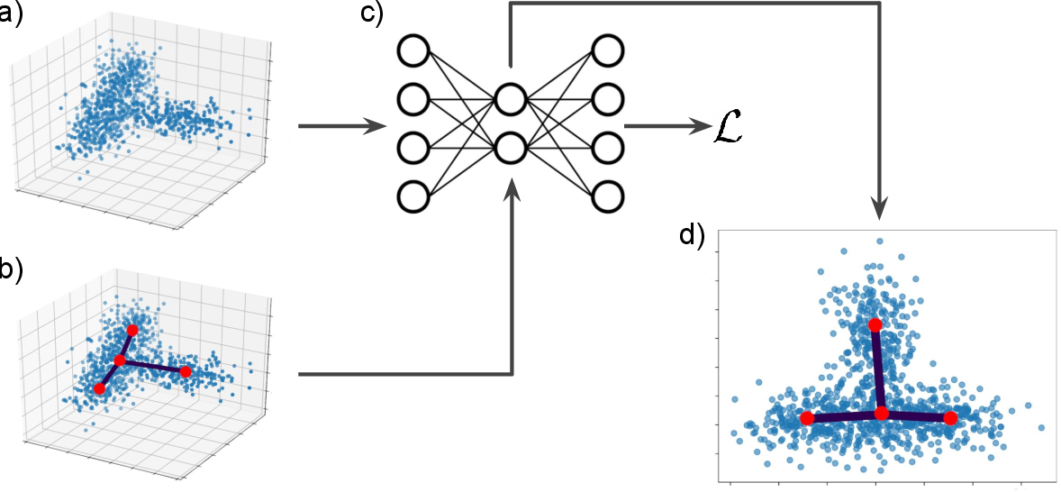 Figure 1 for Visualizing hierarchies in scRNA-seq data using a density tree-biased autoencoder