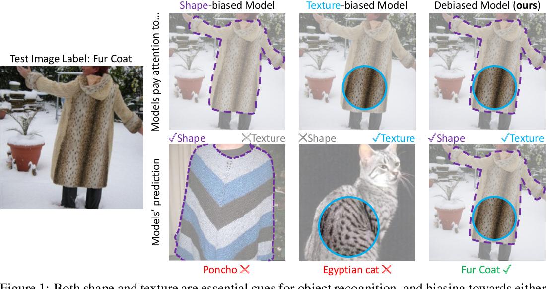 Figure 1 for Shape-Texture Debiased Neural Network Training