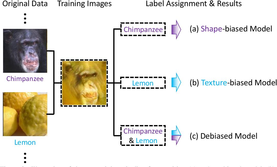 Figure 3 for Shape-Texture Debiased Neural Network Training