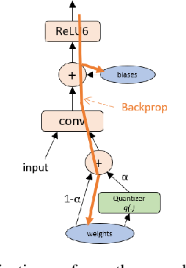 Figure 3 for Learning low-precision neural networks without Straight-Through Estimator(STE)