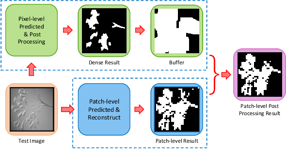 Figure 4 for A Multi-scale CNN-CRF Framework for Environmental Microorganism Image Segmentation