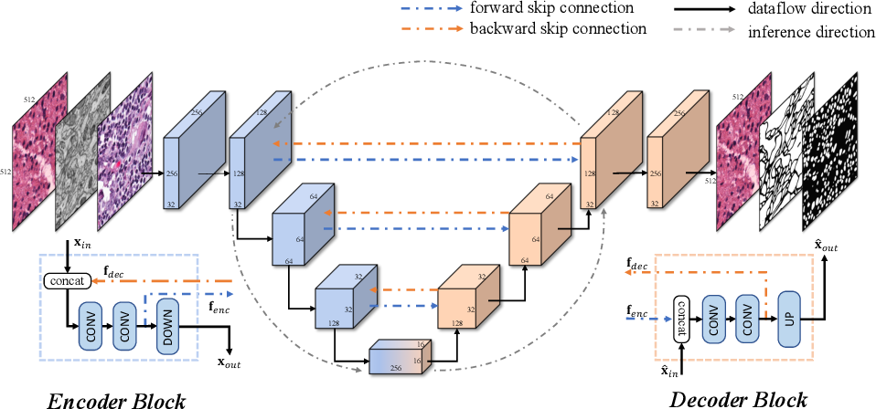 Figure 1 for BiO-Net: Learning Recurrent Bi-directional Connections for Encoder-Decoder Architecture