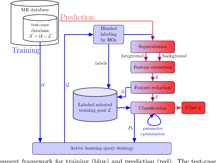 Figure 1 for A Machine-learning framework for automatic reference-free quality assessment in MRI