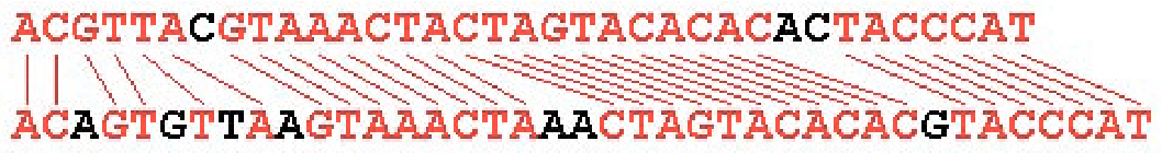 Figure 4: The longest common subsequence of two DNA sequences, that is the subsequence only consisting of matched nucleotides between the two.