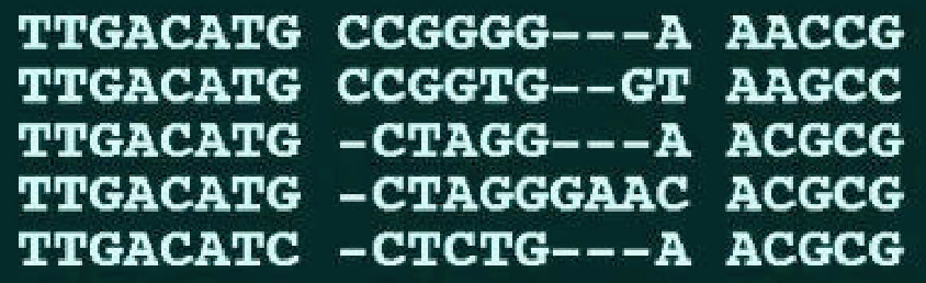 Figure 3: A multiple alignment among five DNA sequences.