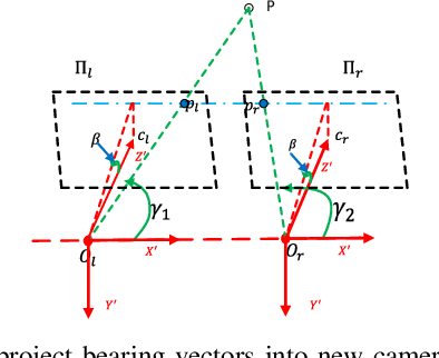Figure 2 for Pixel-variant Local Homography for Fisheye Stereo Rectification Minimizing Resampling Distortion