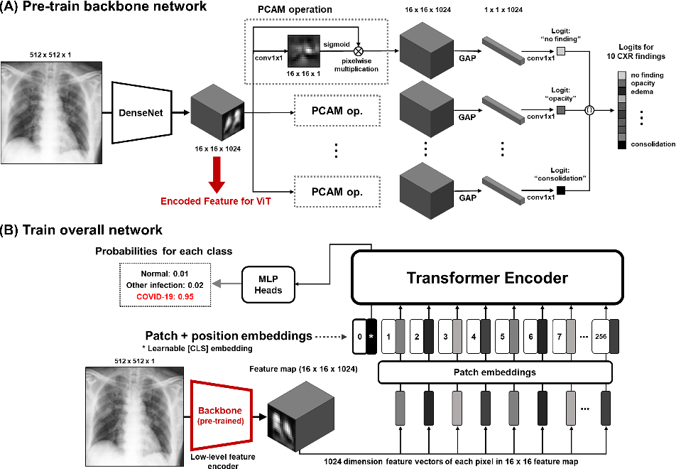 Figure 1 for Vision Transformer for COVID-19 CXR Diagnosis using Chest X-ray Feature Corpus
