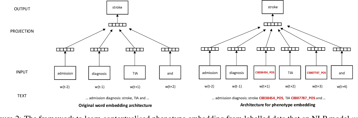 Figure 3 for Contextualised concept embedding for efficiently adapting natural language processing models for phenotype identification