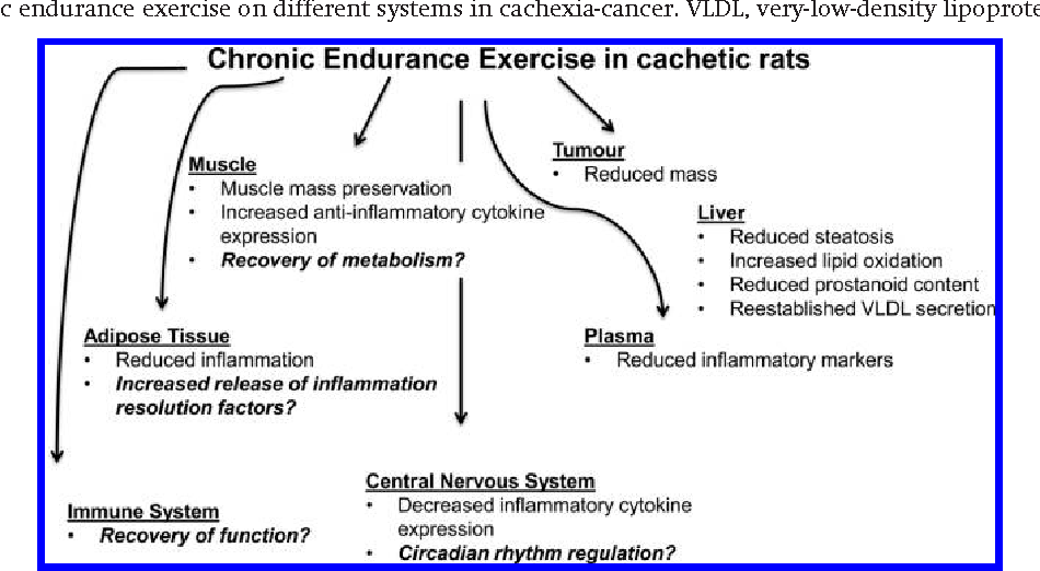 Figure 3 from Exercise training as treatment in cancer cachexia