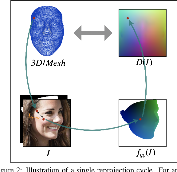 Figure 2 for Weak Multi-View Supervision for Surface Mapping Estimation
