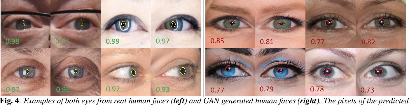Figure 4 for Eyes Tell All: Irregular Pupil Shapes Reveal GAN-generated Faces