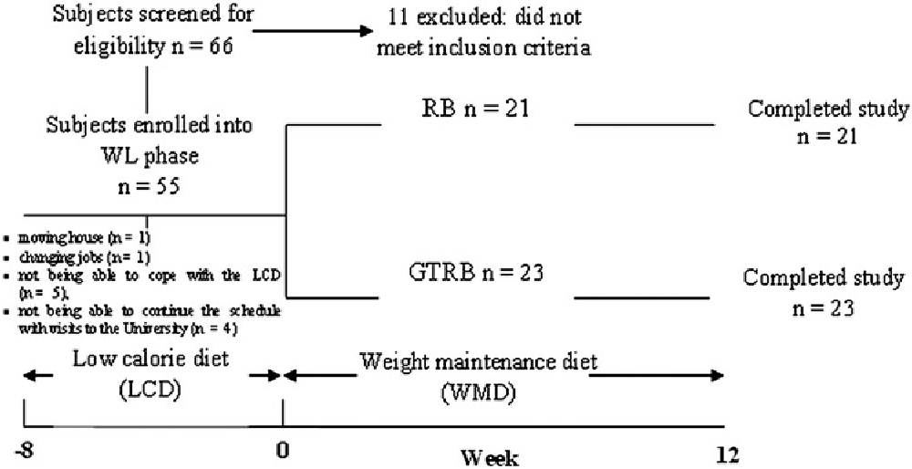 8 week fat loss program round 2 pdf picture 1