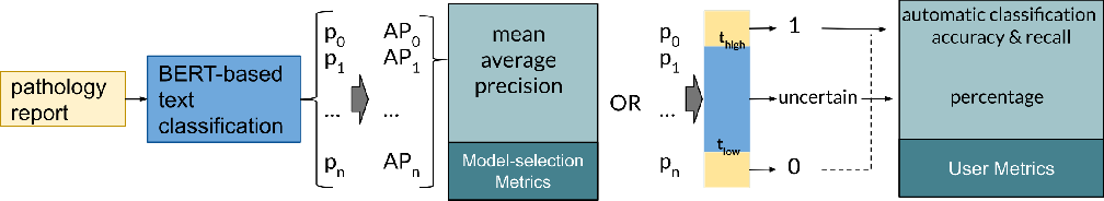Figure 1 for Human-centric Metric for Accelerating Pathology Reports Annotation