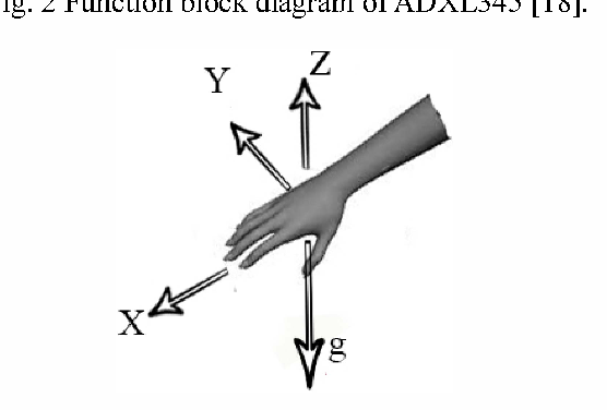 Fig. 3 X-Y-Z axis of an accelerometer in which the X-axis coincide with the direction of a hand, the Z-axis is taken to be vertical when the hand is in the horizontal plane, and g is a gravitational acceleration vector.