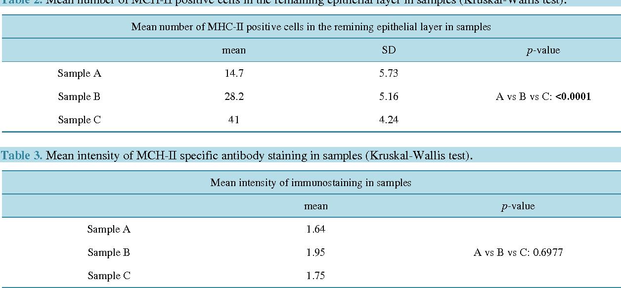 Table 3. Mean intensity of MCH-II specific antibody staining in samples (Kruskal-Wallis test).