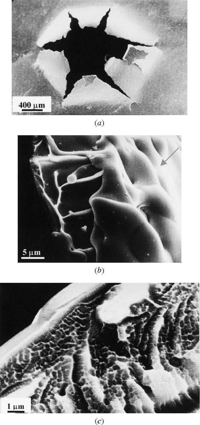 Fig. 5—SEM micrographs of uncharged amorphous Fe80B11Si9 alloylaser shock, the shape of the penetrating hole is macroscopishocked by high-power laser: (a) spall morphology at the rear surface, (b)cally similar to that in the uncharged sample (Figure 6(b)). vein pattern (fractography) and front surface (indicated by arrow), and (c) The fracture surface of the penetratinghole is mostly charac- cellular pattern (fractography). terized by a combination of a smooth surface and vein pat-