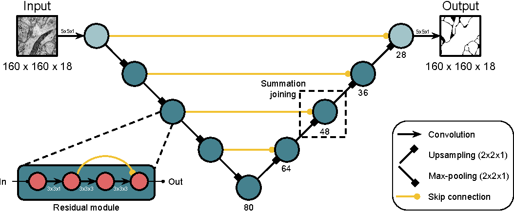 Figure 1 for Superhuman Accuracy on the SNEMI3D Connectomics Challenge