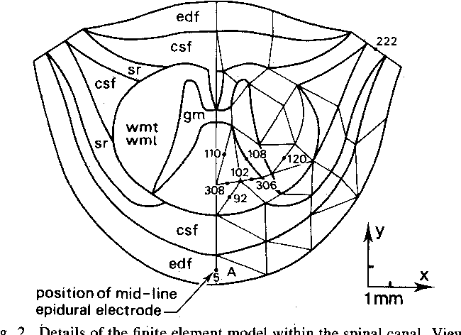 A Theoretical Study Of Epidural Electrical Stimulation Of The Spinal