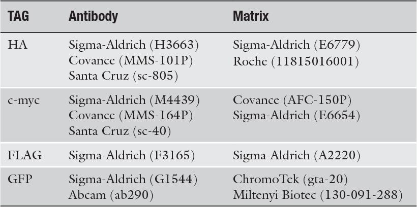 Table 1 from Immunoprecipitation of Cullin-RING Ligases (CRLs) in