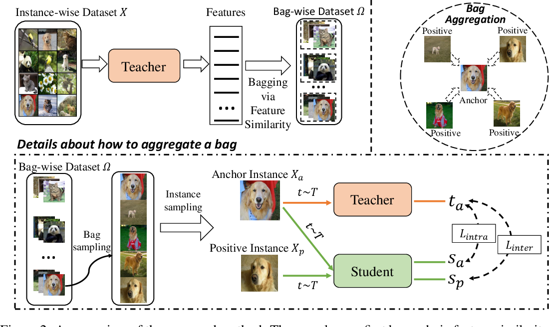 Figure 3 for Bag of Instances Aggregation Boosts Self-supervised Learning