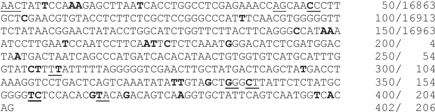 FIG. 2—Sylvester reference sequence for domestic cat mtDNA control region (CR). Presented is the majority rule consensus sequence generated from 1315 mtDNA CR sequences from domestic cats. The nucleotides presented in bold identify the 37 transition and transversion sites identified. Nucleotides adjacent to an insertion ⁄ deletion are underlined. Numbering is in reference to the PCR-generated product ⁄ first mtDNA genomic sequence generated for the cat (33).