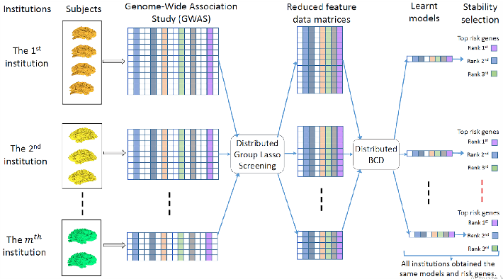 Figure 1 for Large-scale Feature Selection of Risk Genetic Factors for Alzheimer's Disease via Distributed Group Lasso Regression