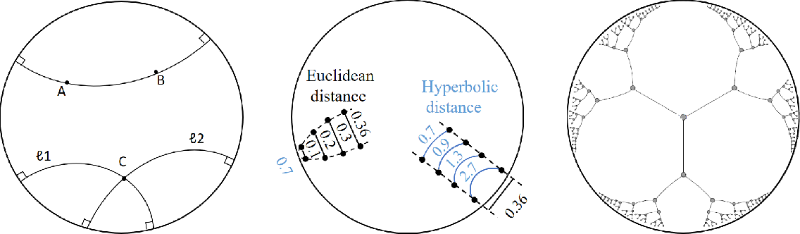 Figure 3 for Hyperbolic Deep Neural Networks: A Survey