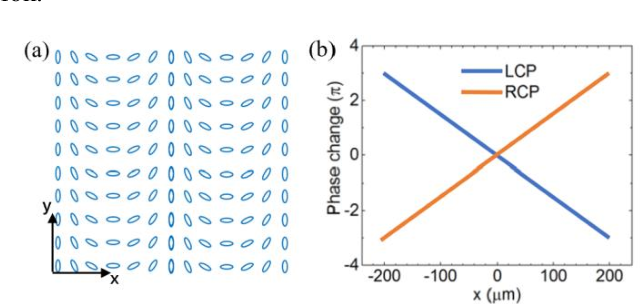 Figure 4 for Large depth of range Maxwellian-viewing SMV near-eye display based on a Pancharatnam-Berry optical element