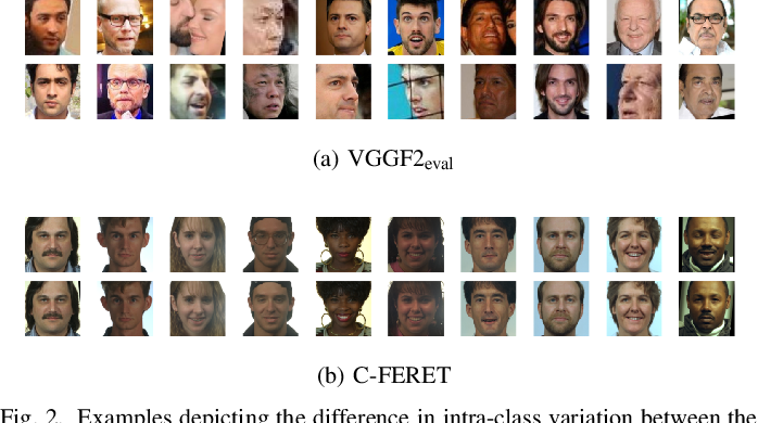 Figure 2 for Multiple-Identity Image Attacks Against Face-based Identity Verification