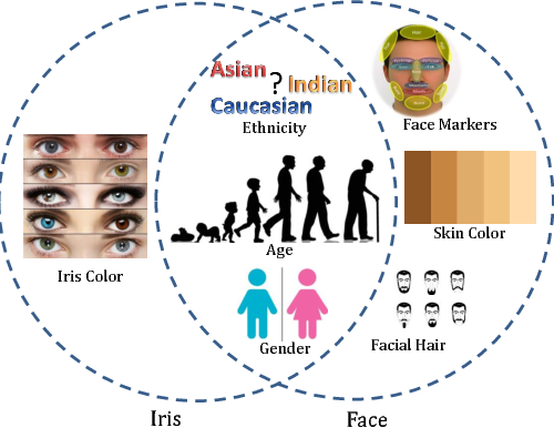 Figure 1 for Gender and Ethnicity Classification of Iris Images using Deep Class-Encoder