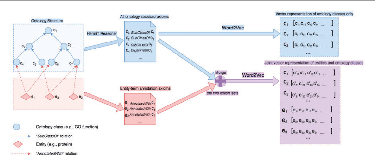 Figure 1 for Onto2Vec: joint vector-based representation of biological entities and their ontology-based annotations