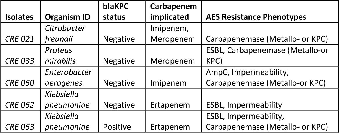 carbapenem resistance dissertation