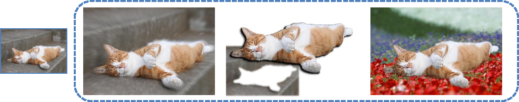 Figure 1 for Selective Image Super-Resolution