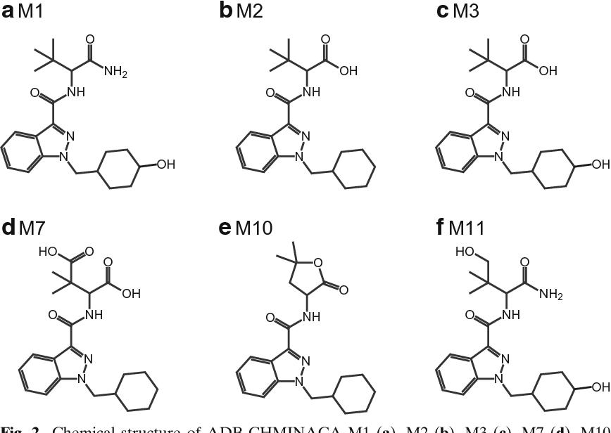 Identification of New Synthetic Cannabinoid ADB-CHMINACA (MAB