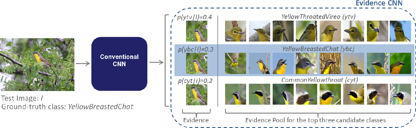 Figure 3 for Guided Zoom: Questioning Network Evidence for Fine-grained Classification