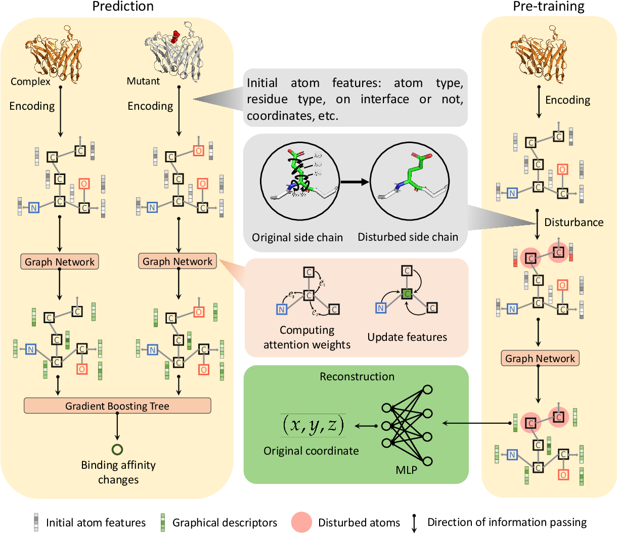 Figure 1 for Pre-training of Graph Neural Network for Modeling Effects of Mutations on Protein-Protein Binding Affinity