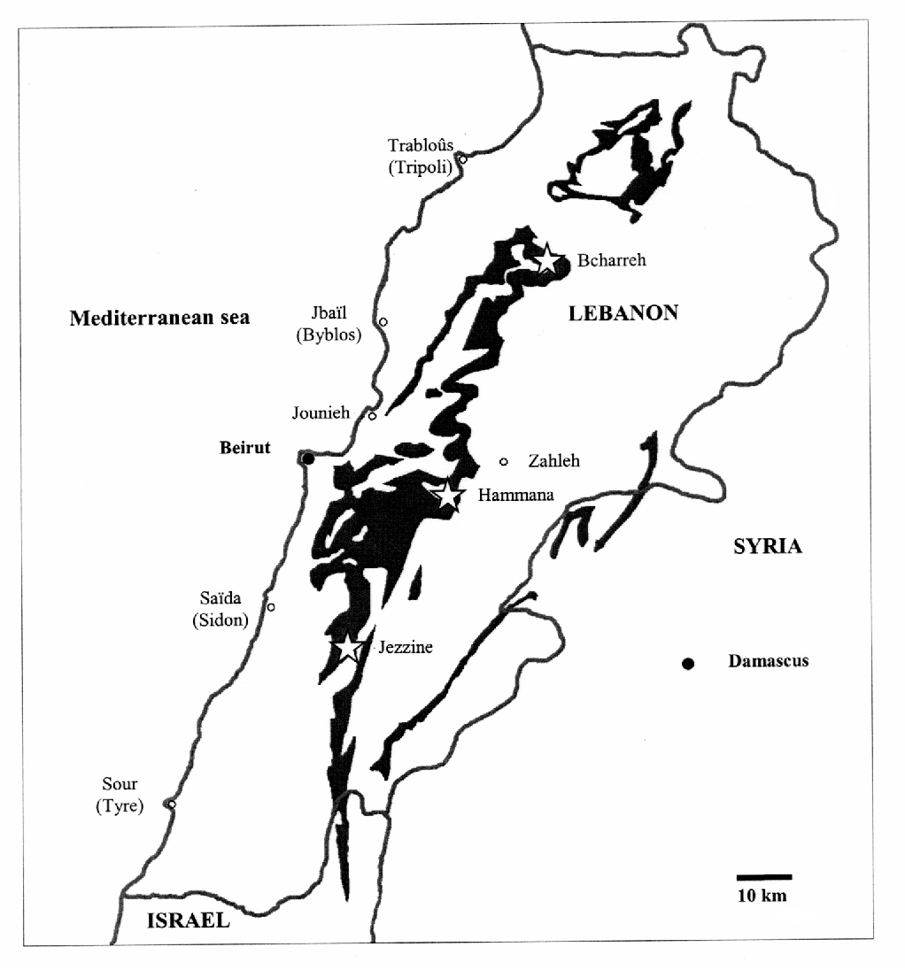 Fig. 1 Map of Lebanon (adapted from DUBERTRET 1941-3) presenting the distribution of amber outcrops (black area), the stars indicate three major fossiliferous outcrops of amber compared in this study.