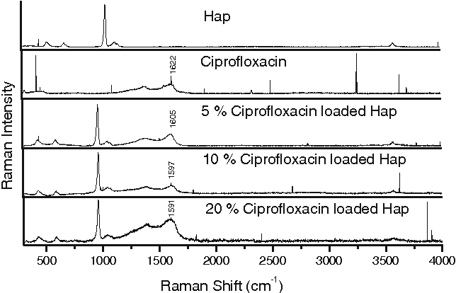 Fig. 6 Raman spectrum of ciprofloxacin-loaded hydroxyapatite