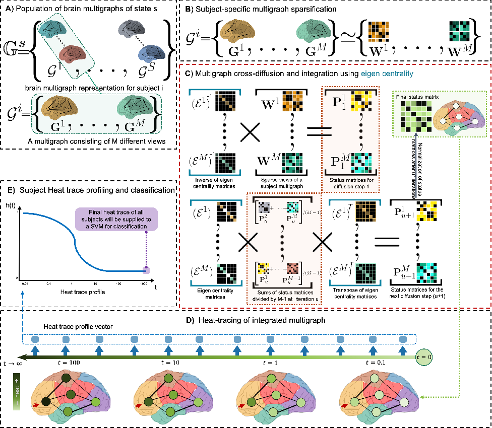 Figure 1 for Multi-Scale Profiling of Brain Multigraphs by Eigen-based Cross-Diffusion and Heat Tracing for Brain State Profiling