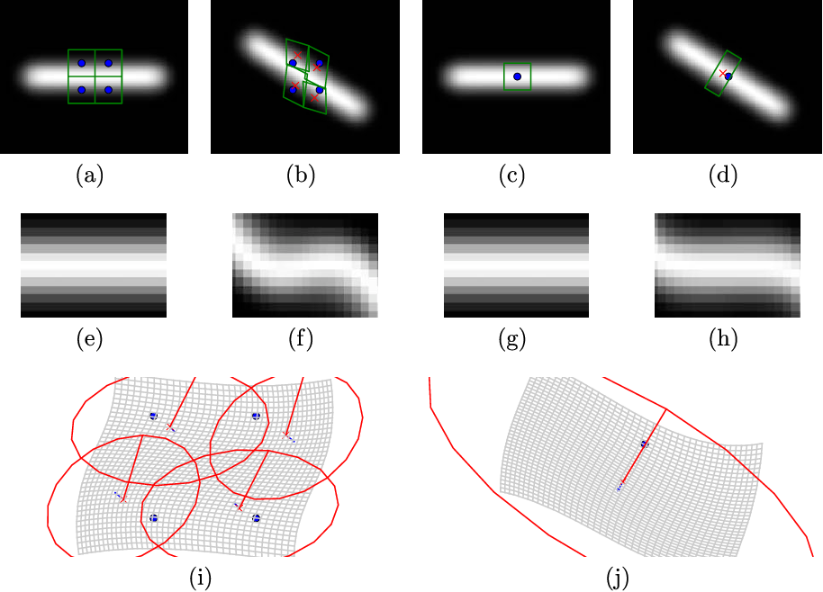 Figure 4 for Higher-order Spatial Accuracy in Diffeomorphic Image Registration
