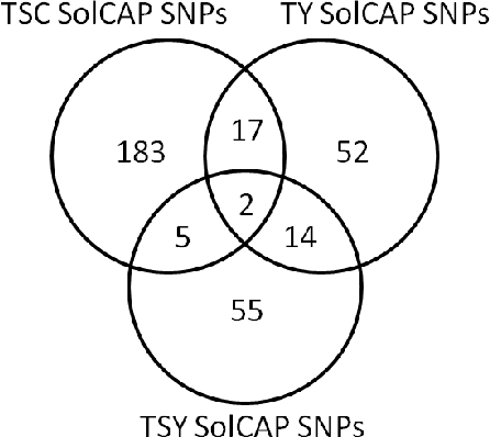 Figure 3.2.: SolCAP SNPs with significantly (α=0.01) different allele frequencies between pools of case-control studies. The detailed list of all significant SolCAP SNP loci is provided in Appendix B (Table B.17)