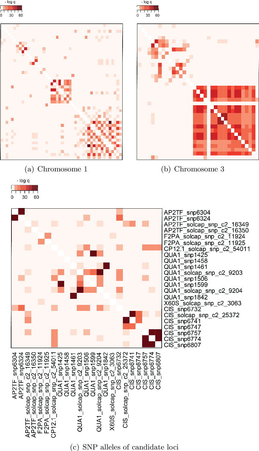 Figure 3.4.: Linkage disequilibrium between marker pairs of significant SolCAP SNP loci on chromosomes 1 (a) and 3 (b) as well as between SNP alleles of candidate loci that were scored in the entire population (c). Displayed are -log q-values of chi-square test between pairs of SolCAP SNPs. Each row and line corresponds to one SNP position