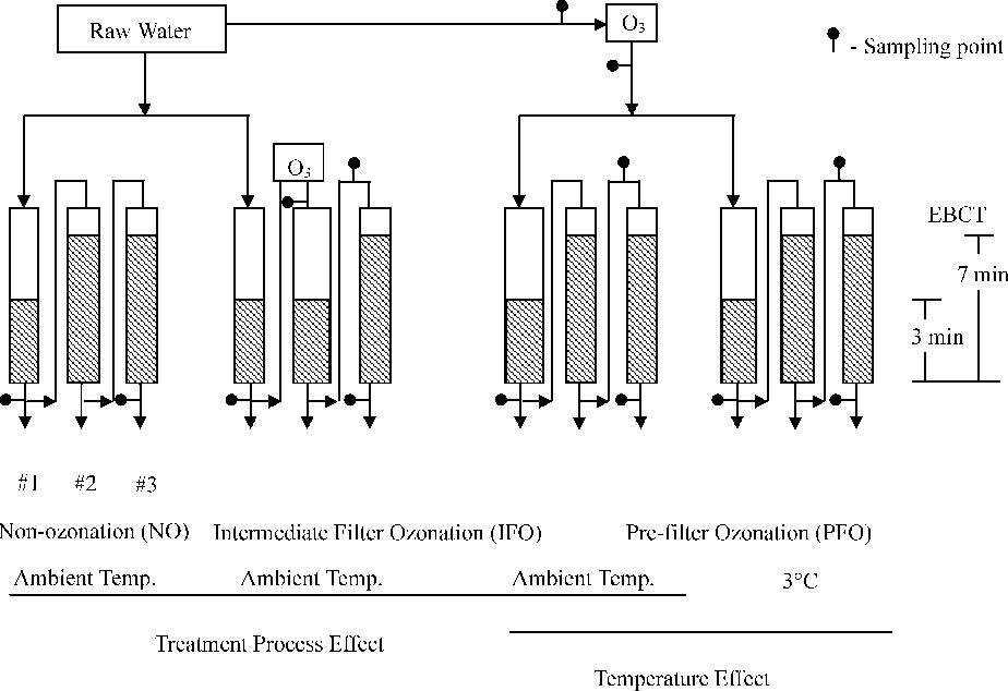 Fig. 1. Biofiltration apparatus.