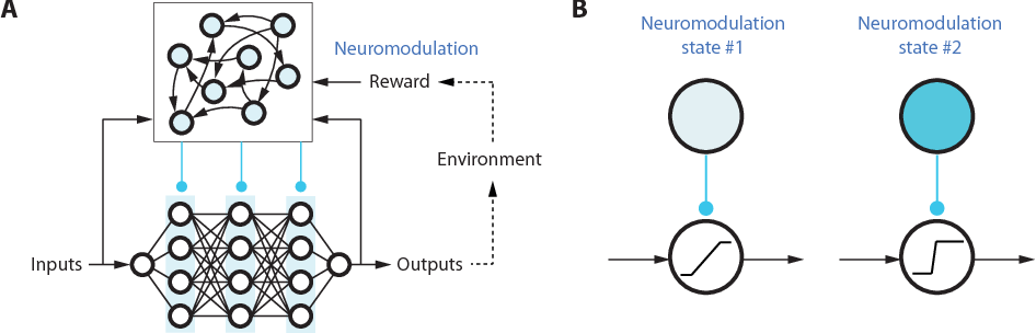 Figure 1 for Introducing Neuromodulation in Deep Neural Networks to Learn Adaptive Behaviours