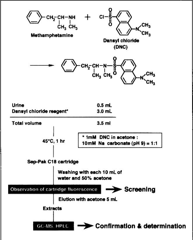 Figure 1 from Dansyl chloride derivatization of methamphetamine: a