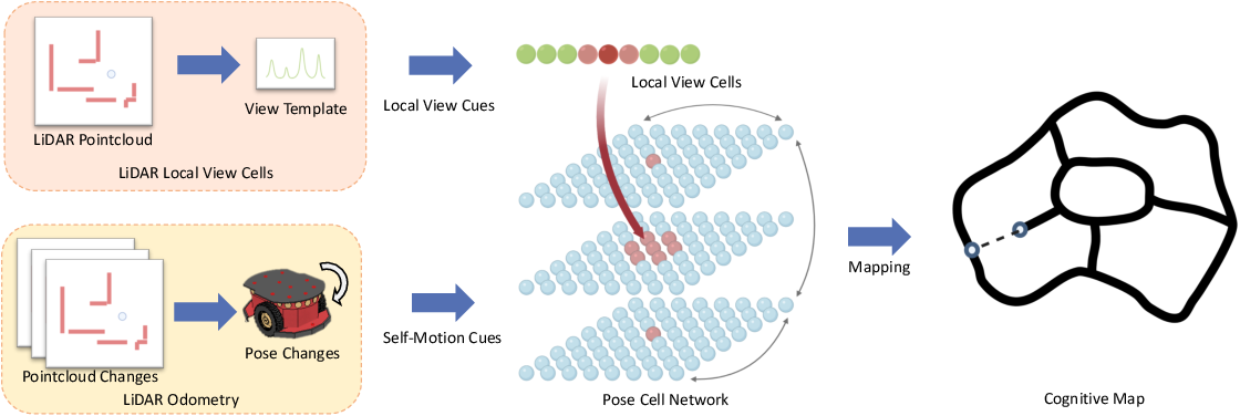 Figure 1 for A Biologically Inspired Simultaneous Localization and Mapping System Based on LiDAR Sensor