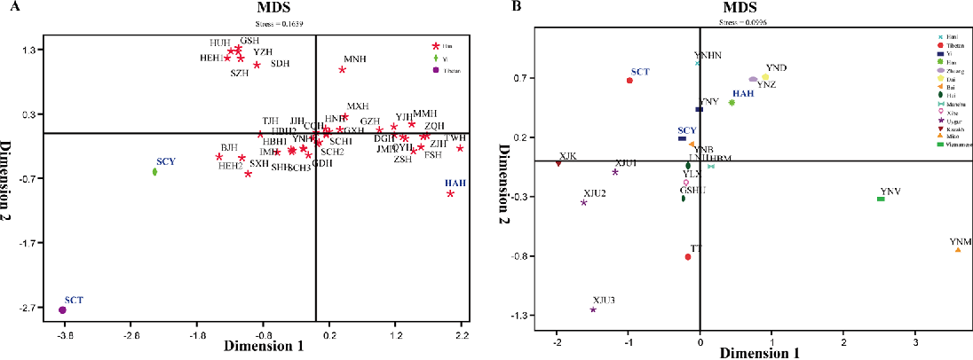 Genetic characteristics and phylogenetic analysis of three