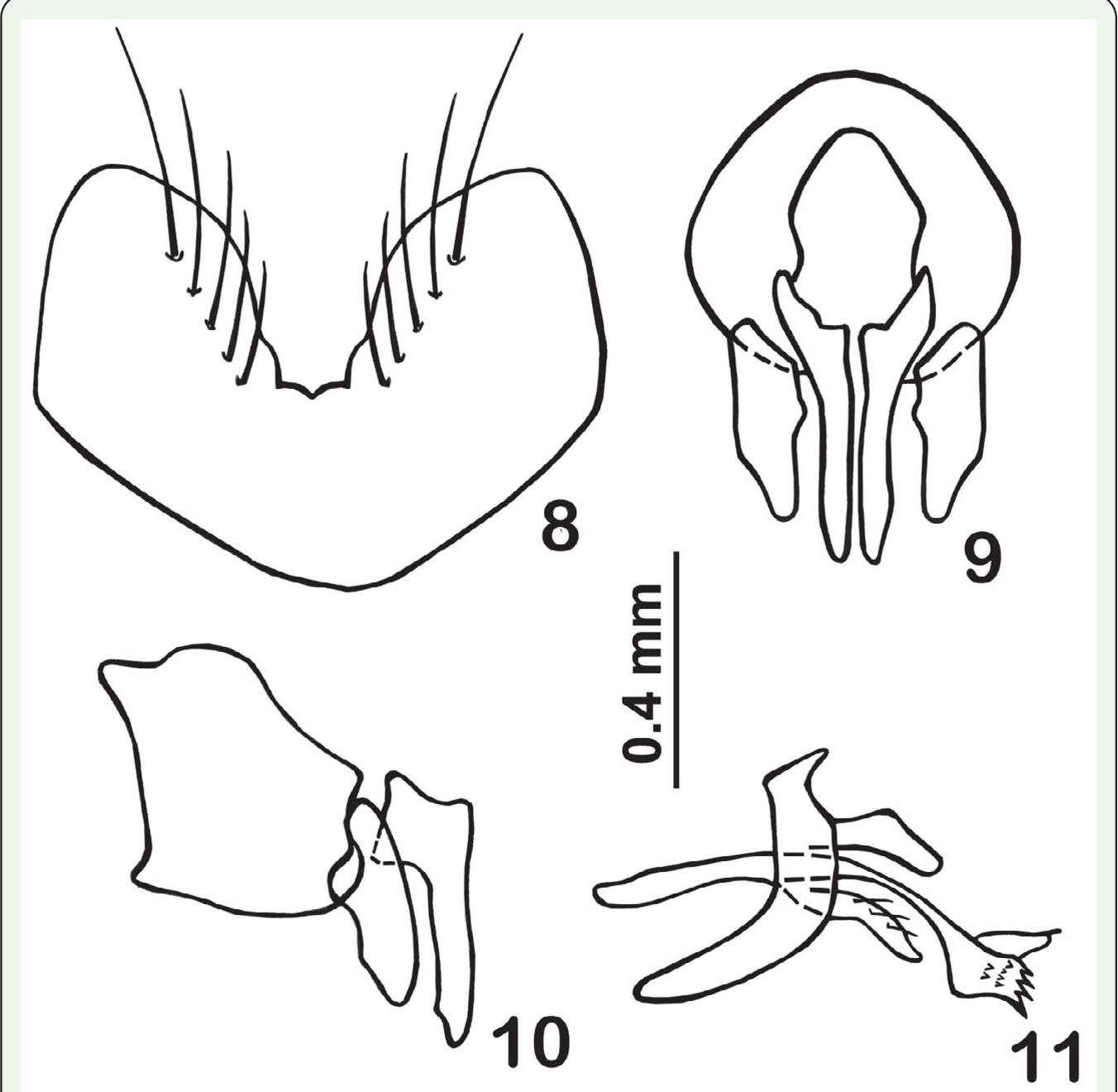 figure 8–11