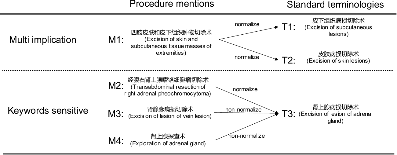 Figure 1 for A multi-perspective combined recall and rank framework for Chinese procedure terminology normalization