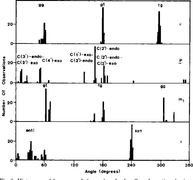 Fig. 3. Histograms of frequency of observed angles for all conformations having energies of 7.0 kcal/mole or less.